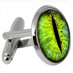 Reptile Eye Cufflinks